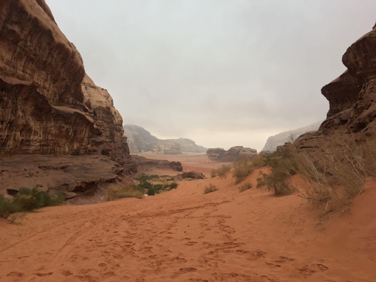Wadi Rum - Abu Khashebah RS - 7.jpg