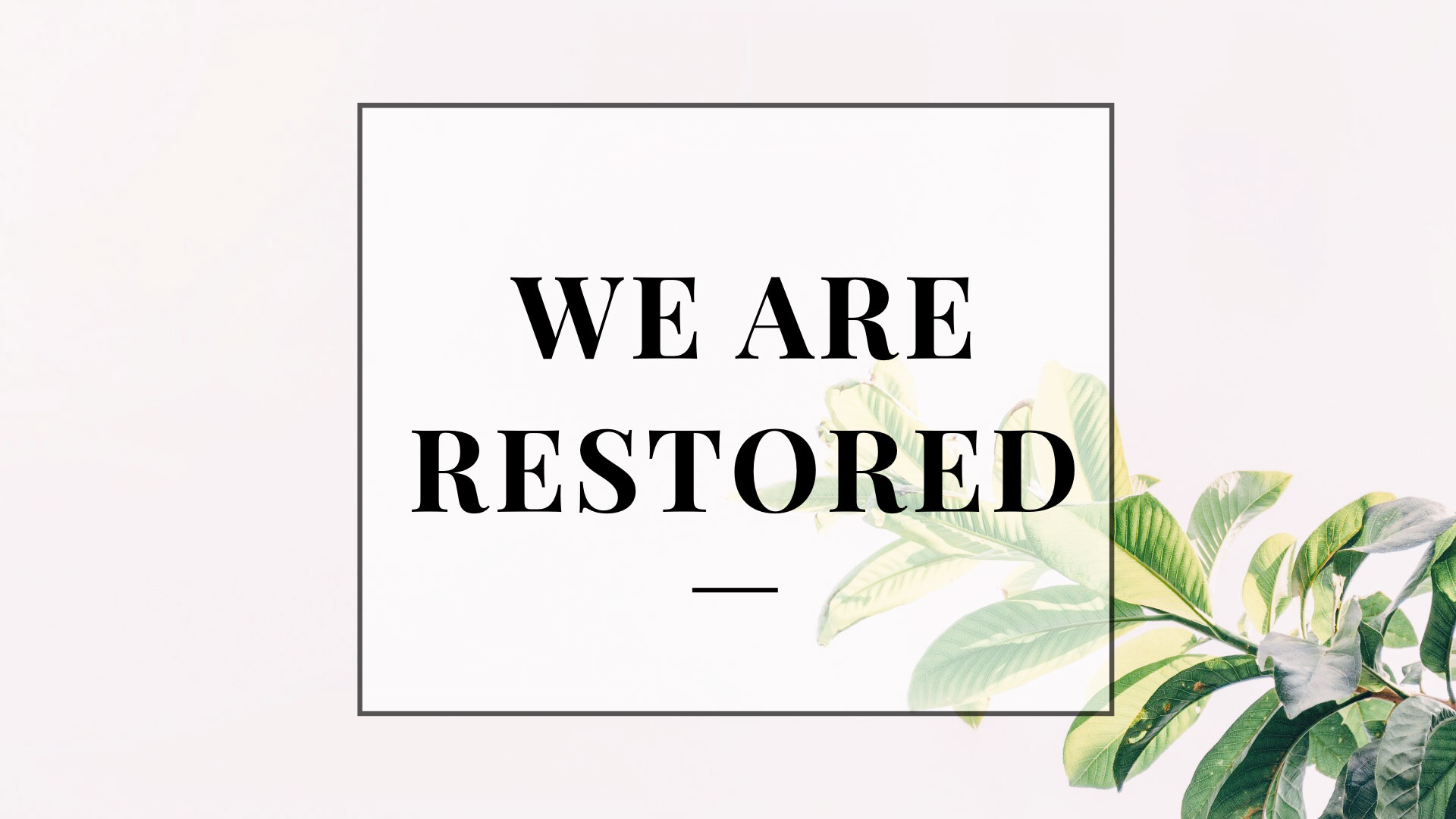 We-Are-Restored-SeriesWeb.jpg