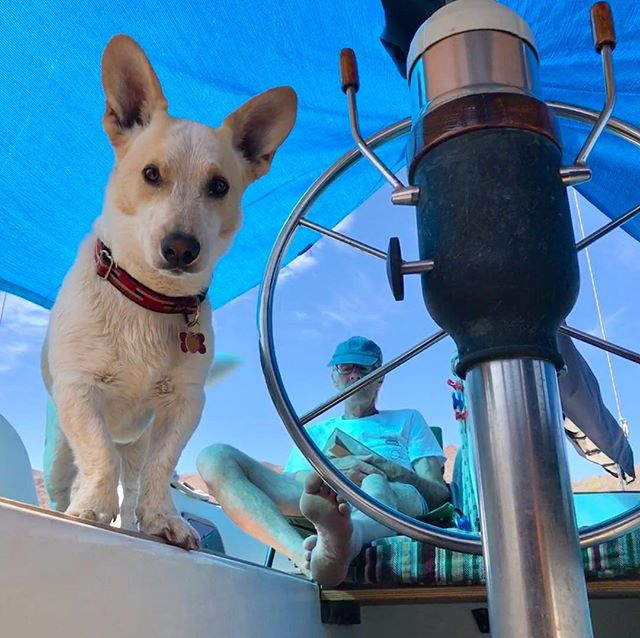 "Aboard ""Harmony"": In the cockpit with Winston in the Sea of Cortez."