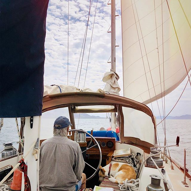 """I took this photo while we were gently sailing into Bahia Concepcion in the Sea of Cortez. Our cockpit is a mess, the seas are calm. The fact is sometimes """"Harmony is ship shape, sometimes she's not. Stuff in the cockpit: two solar lights charging in the sun, Goal Zero and dLight; two cruising guides, Sea of Cortez: A Cruisers Guidebook and Baja Sea Guide, our man-overboard light, and Winston's leash, bed and stuffed animal. #cruising #sailing #aboardharmony #seaofcortez #mexico #goalzero #dlight"""