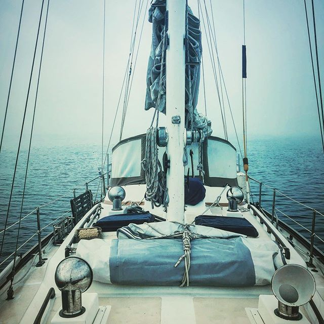 Harmony anchored in a foggy anchorage in the Sea of Cortez. #seaofcortez #aboardharmony #bahiaconcepcion