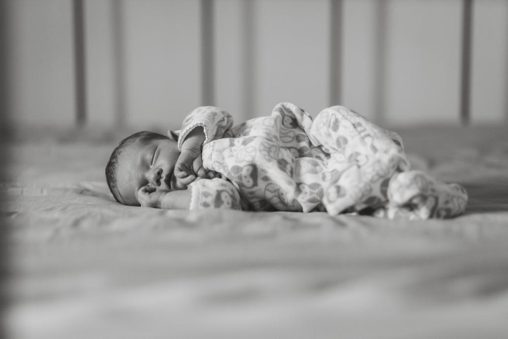 santa_barbara_newborn.jpg