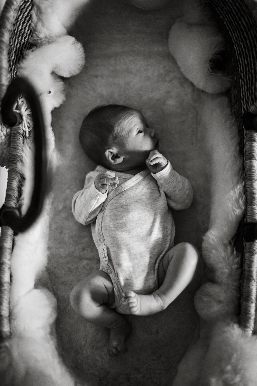 Santa_Barbara_Newborn_Photographer19.jpg
