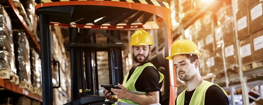 Forklift Drivers Sunlight.jpg