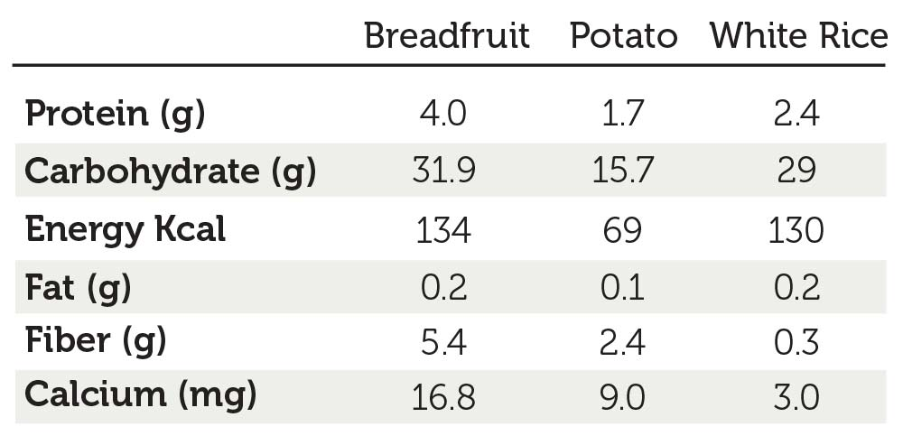 *Nutrition in breadfruit, potato, white rice based on 100g of edible portion.