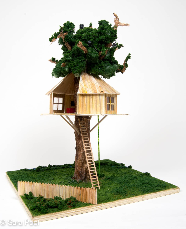 Treehouse_4_LR.jpg