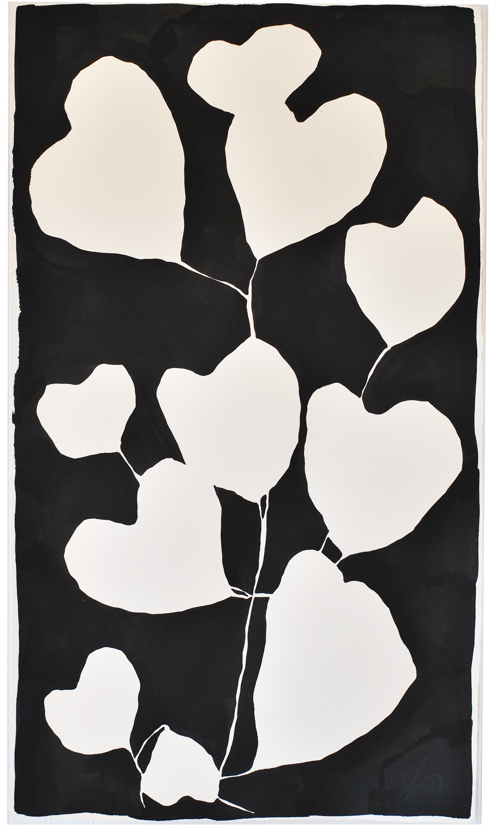 Heart plant -lo.jpg
