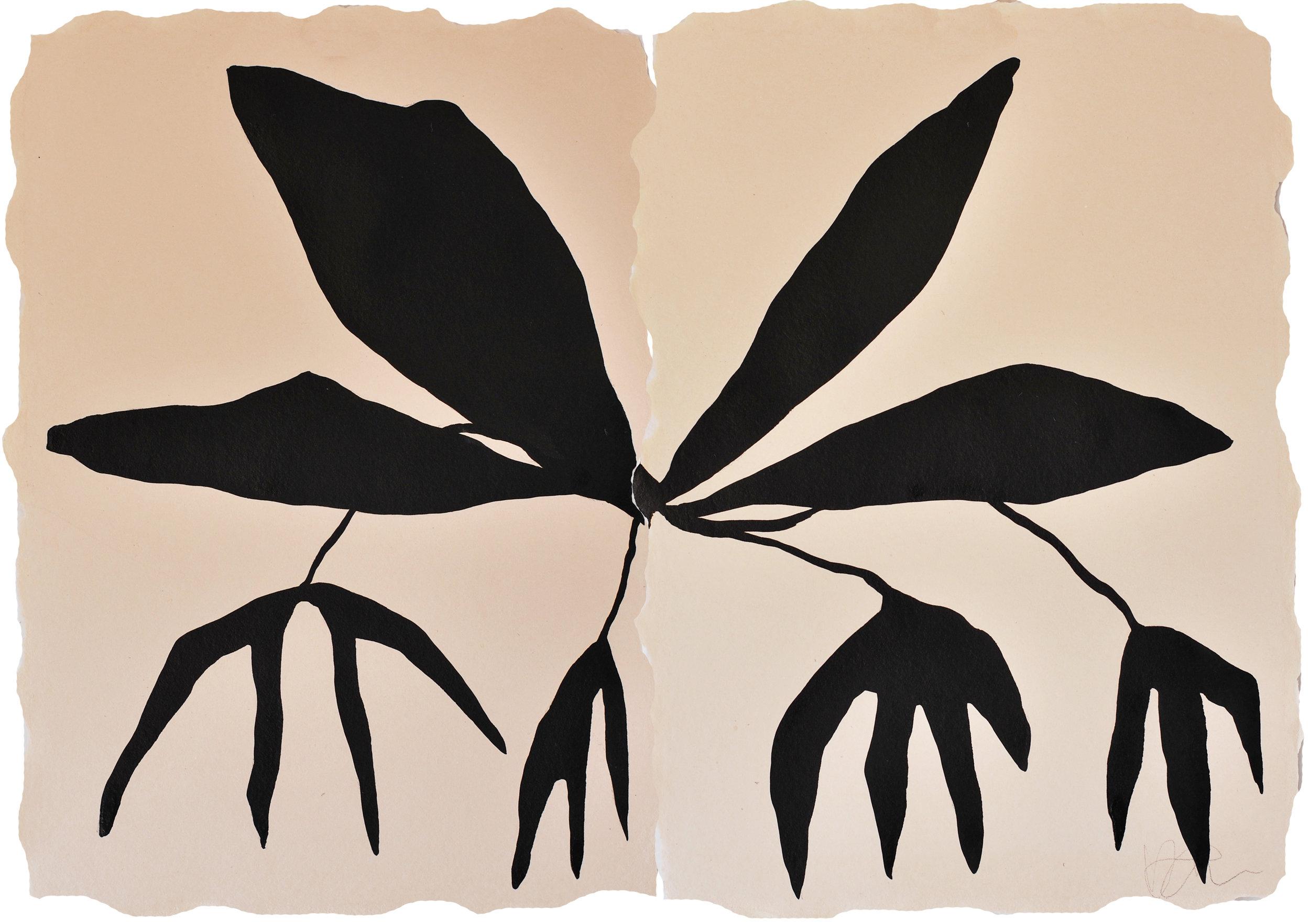 Medium Bulbophyllum-lo.jpg