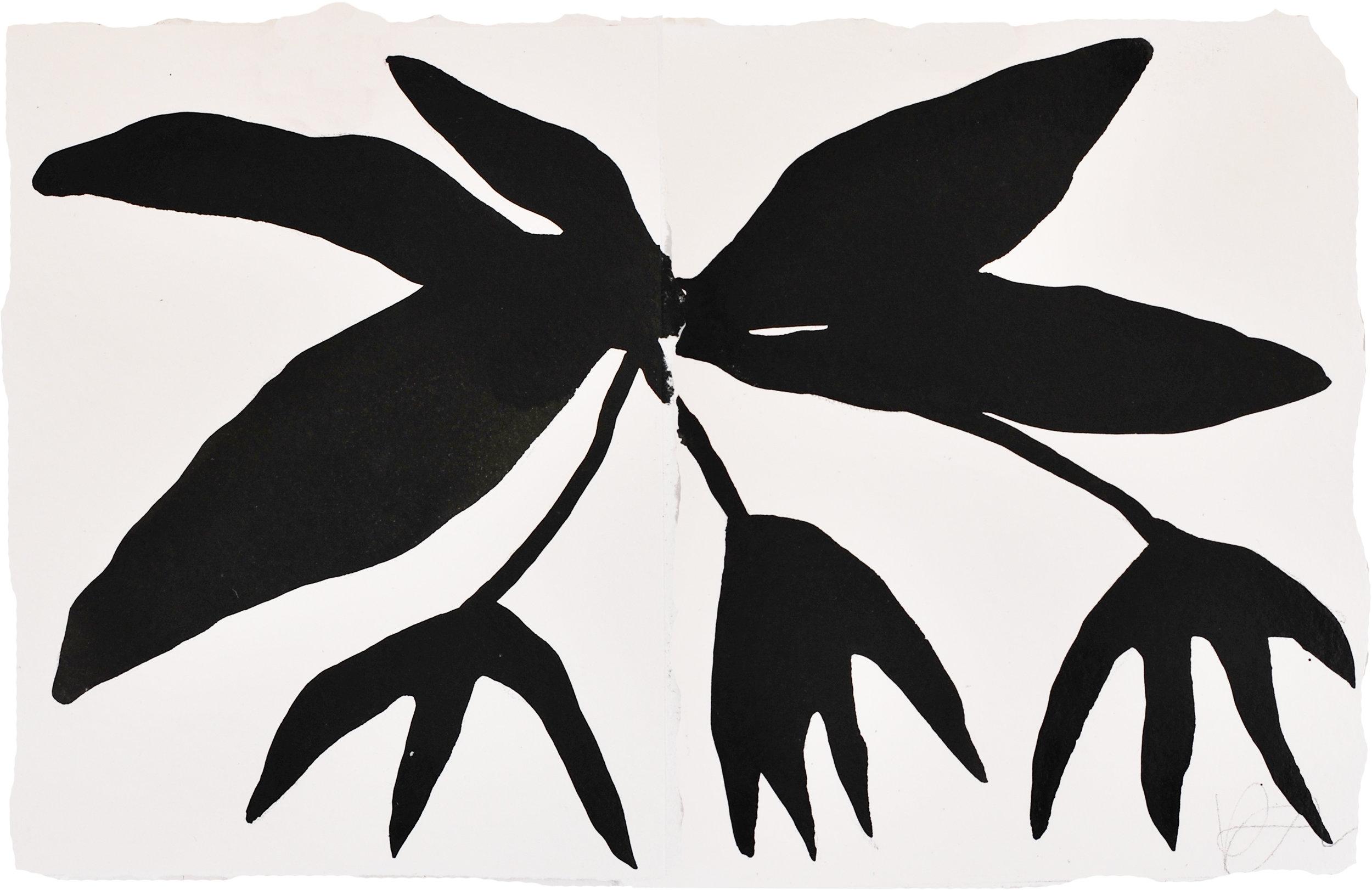 Small Bulbophyllum-lo.jpg
