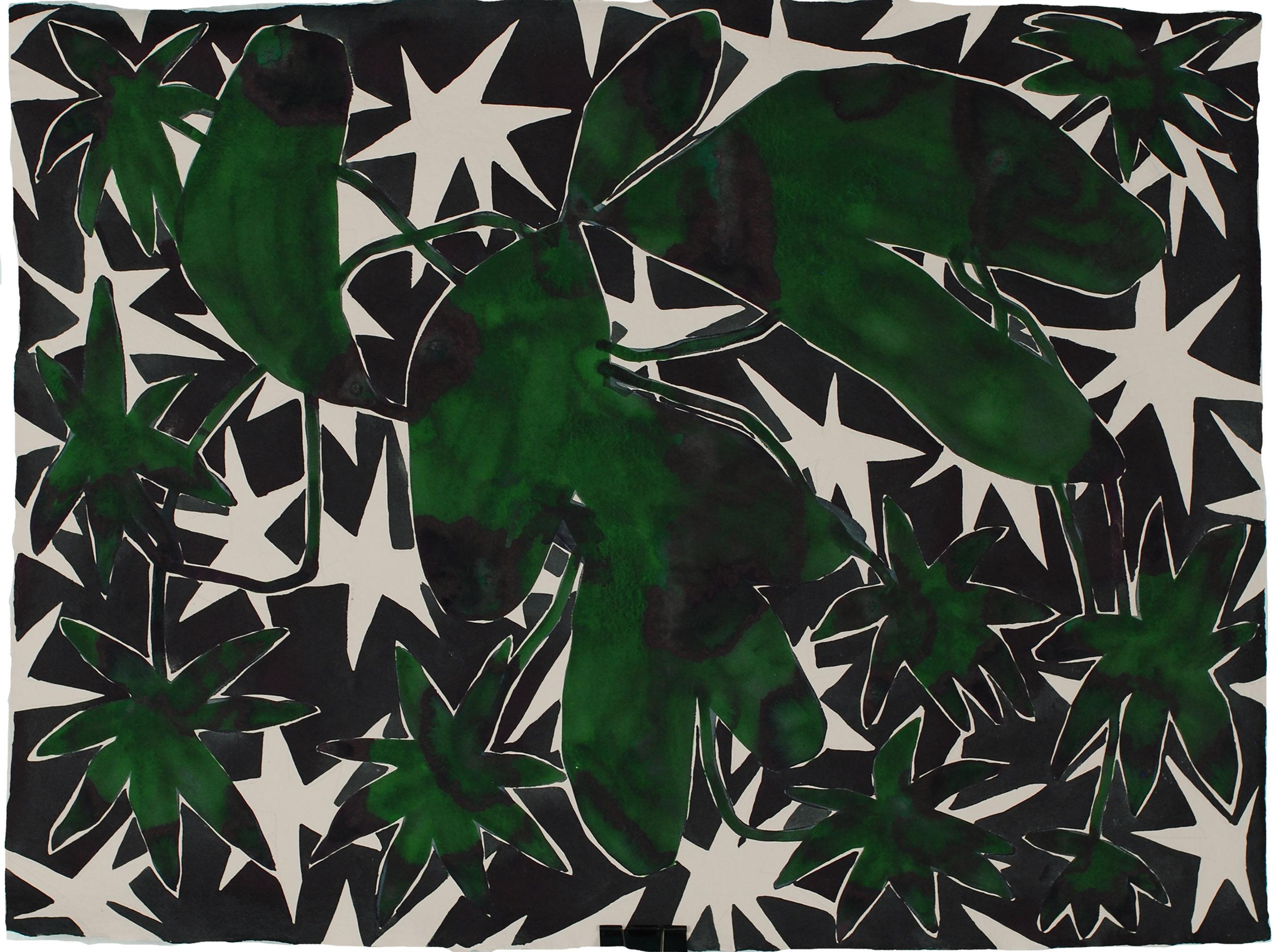 Starry Plant_21.5x28.75.jpg