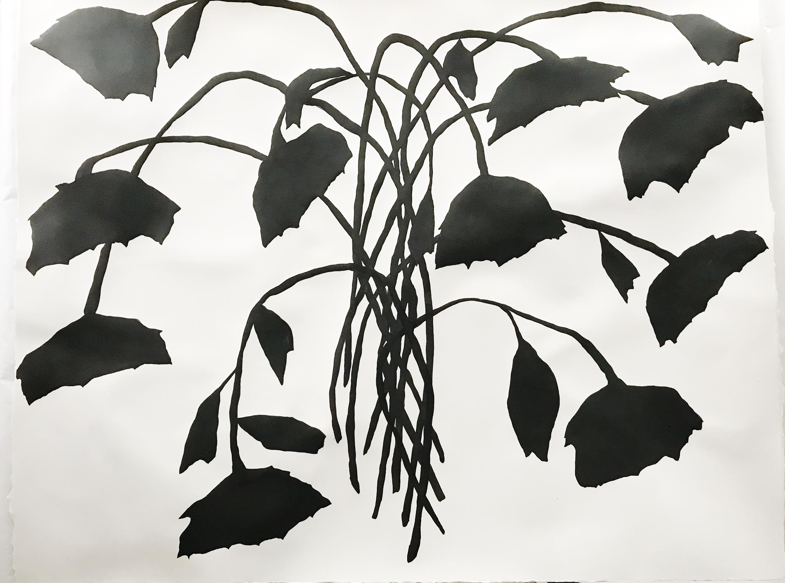 Sunflower Abstract -JW 2.jpg
