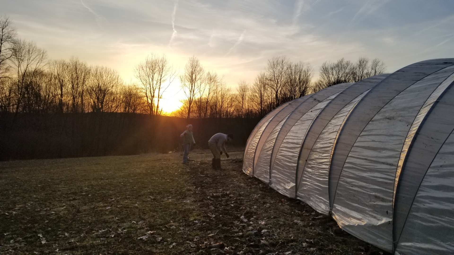 Notes from the Farm — Plot Twist Farm