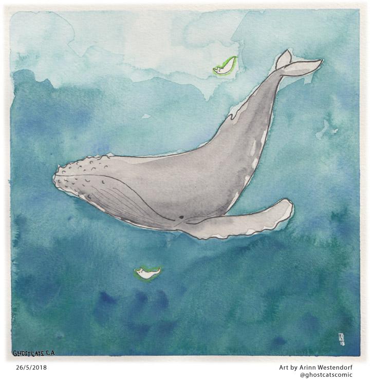 105whaleswim.jpg