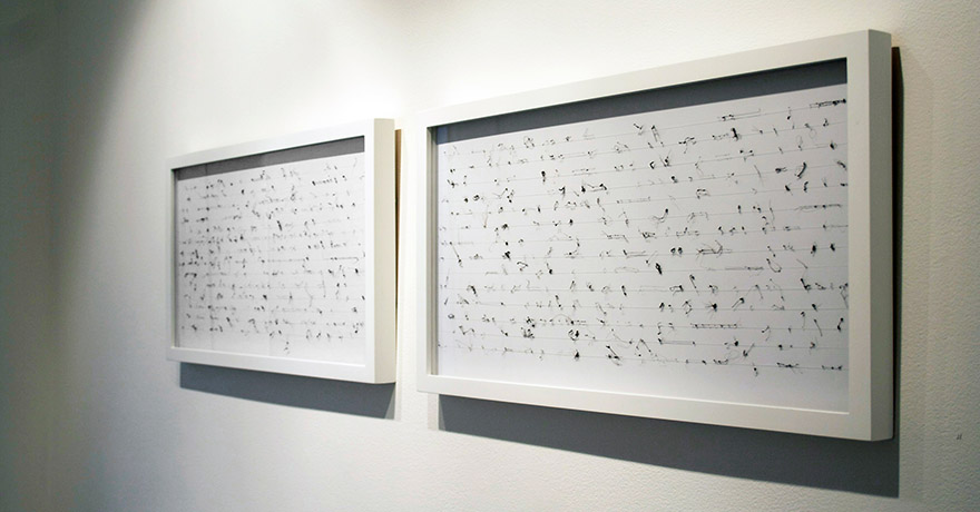 """<i>of syllables</i>, hair, foam core board, mono filament, h. 12 1/8"""" x w. 47""""x d. 1"""" (framed diptych), 2008"""