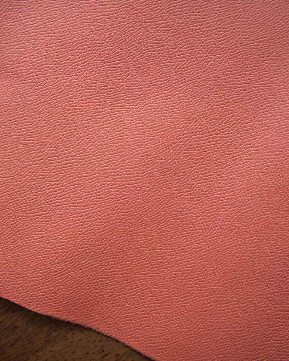 Epsom - Flamingo