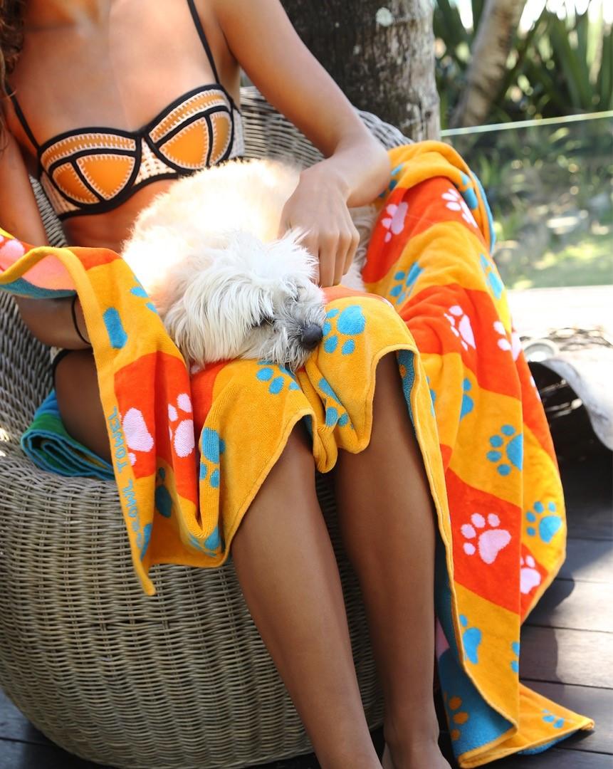 orange stripe paws 2.jpg