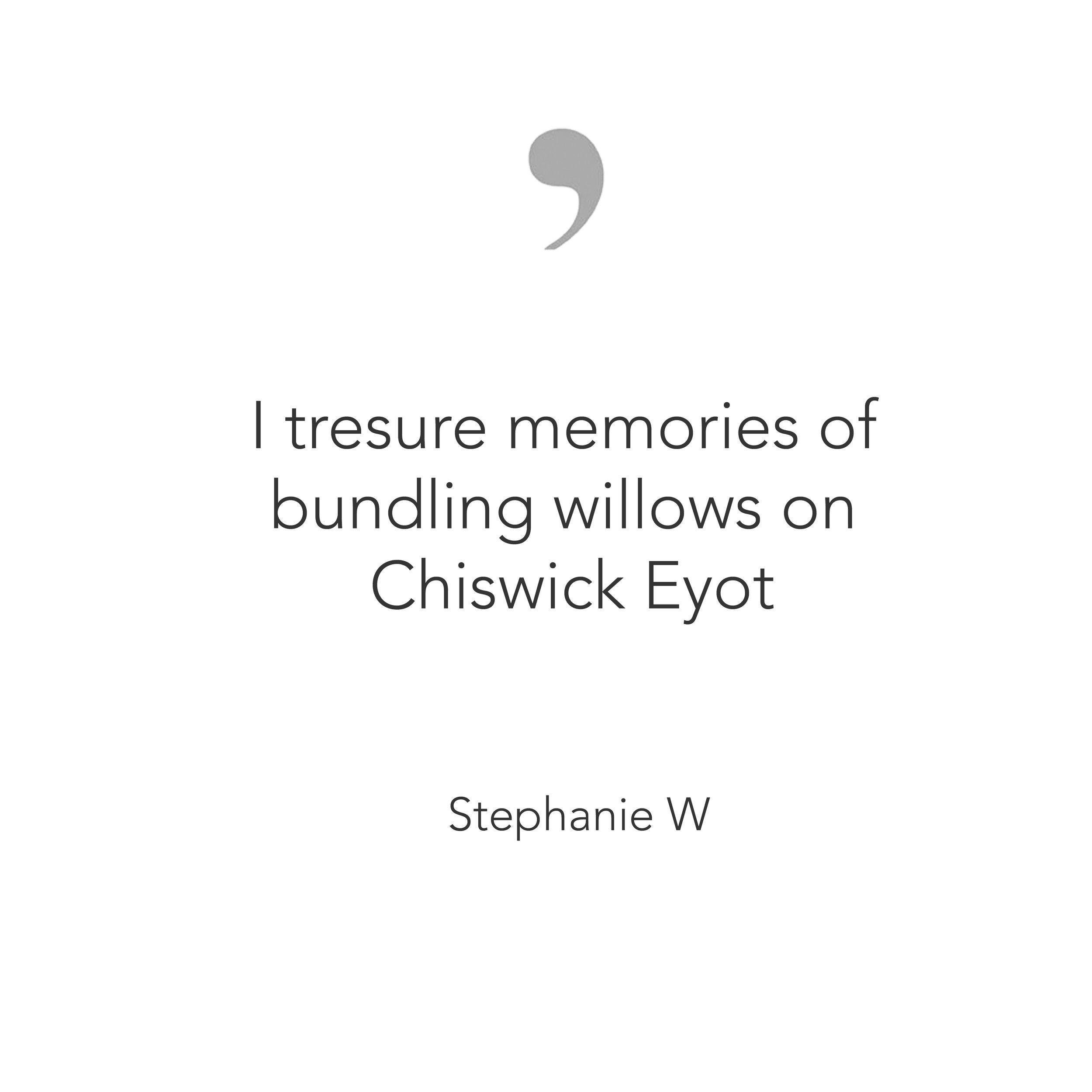 TWV_Quote_StephanieWhite.jpg