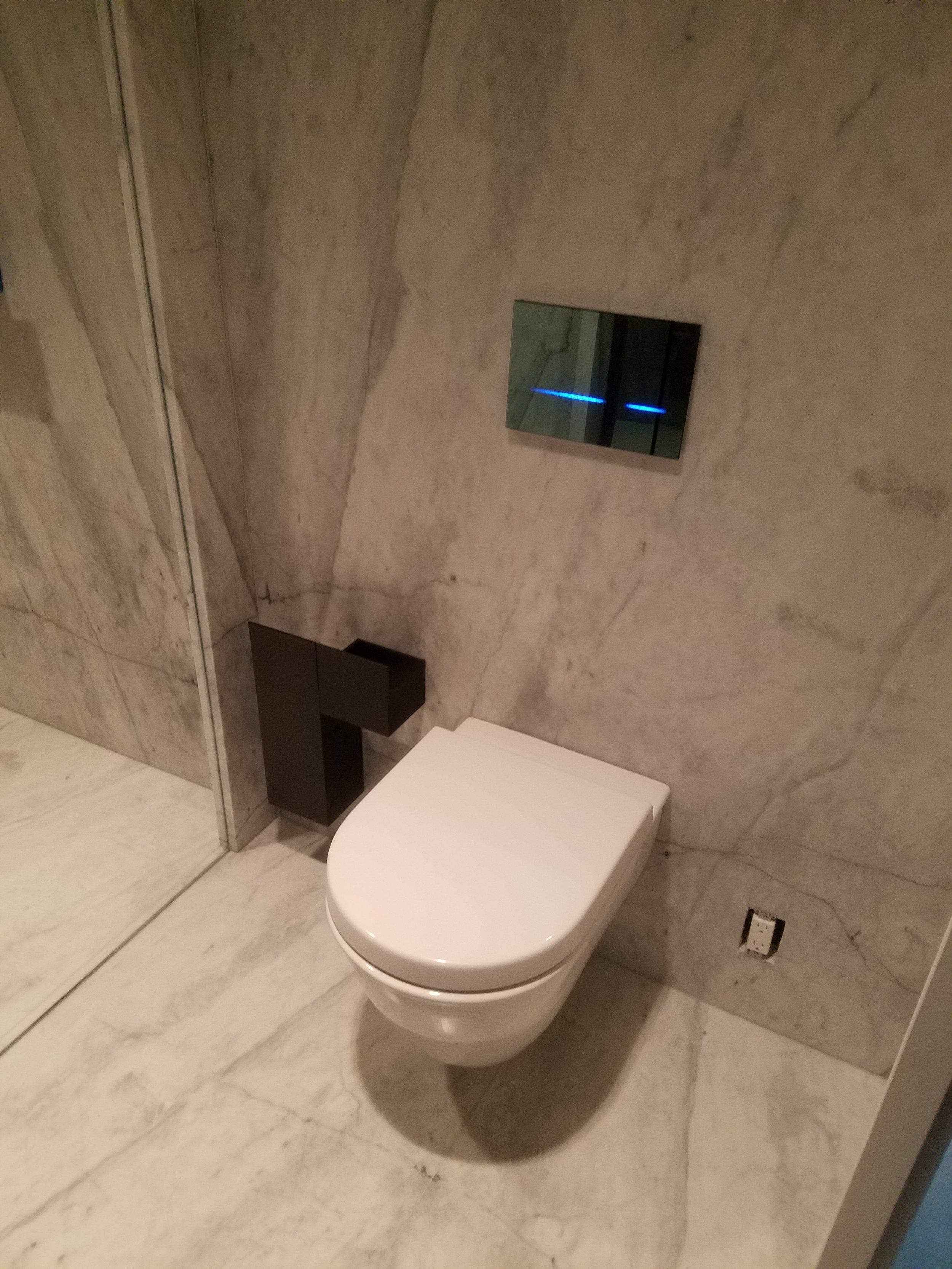 SIck toilet.jpg