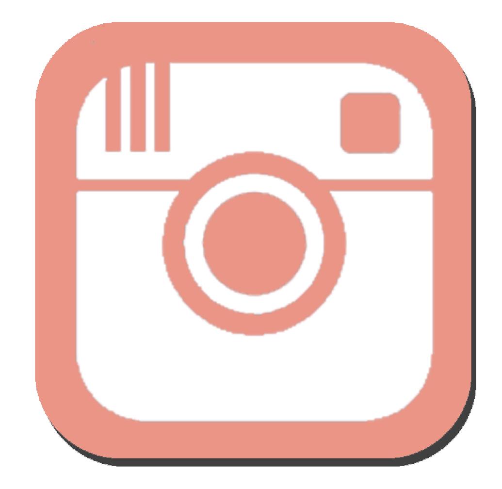 Instagram Widget.png