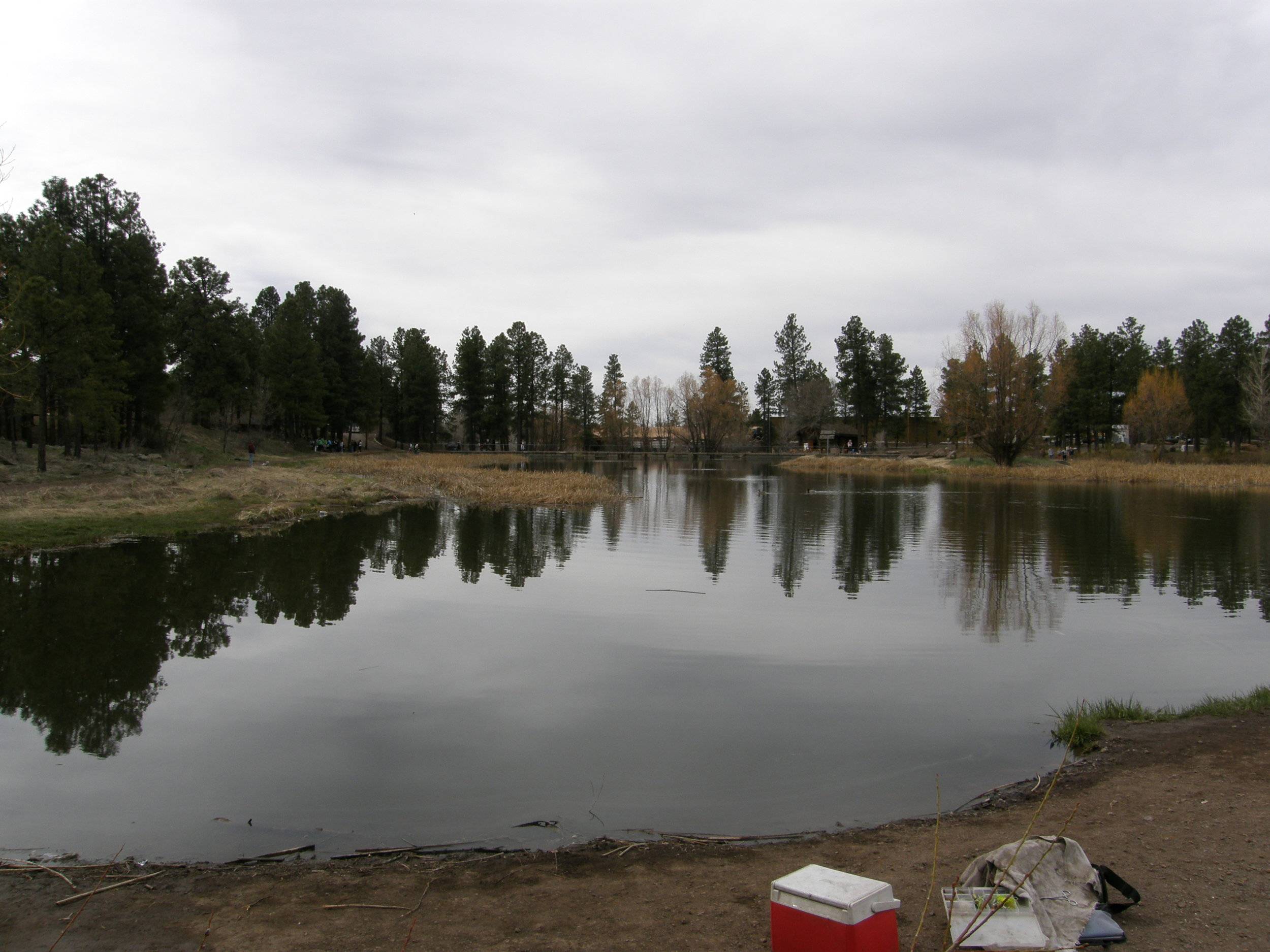 Frances Short Pond