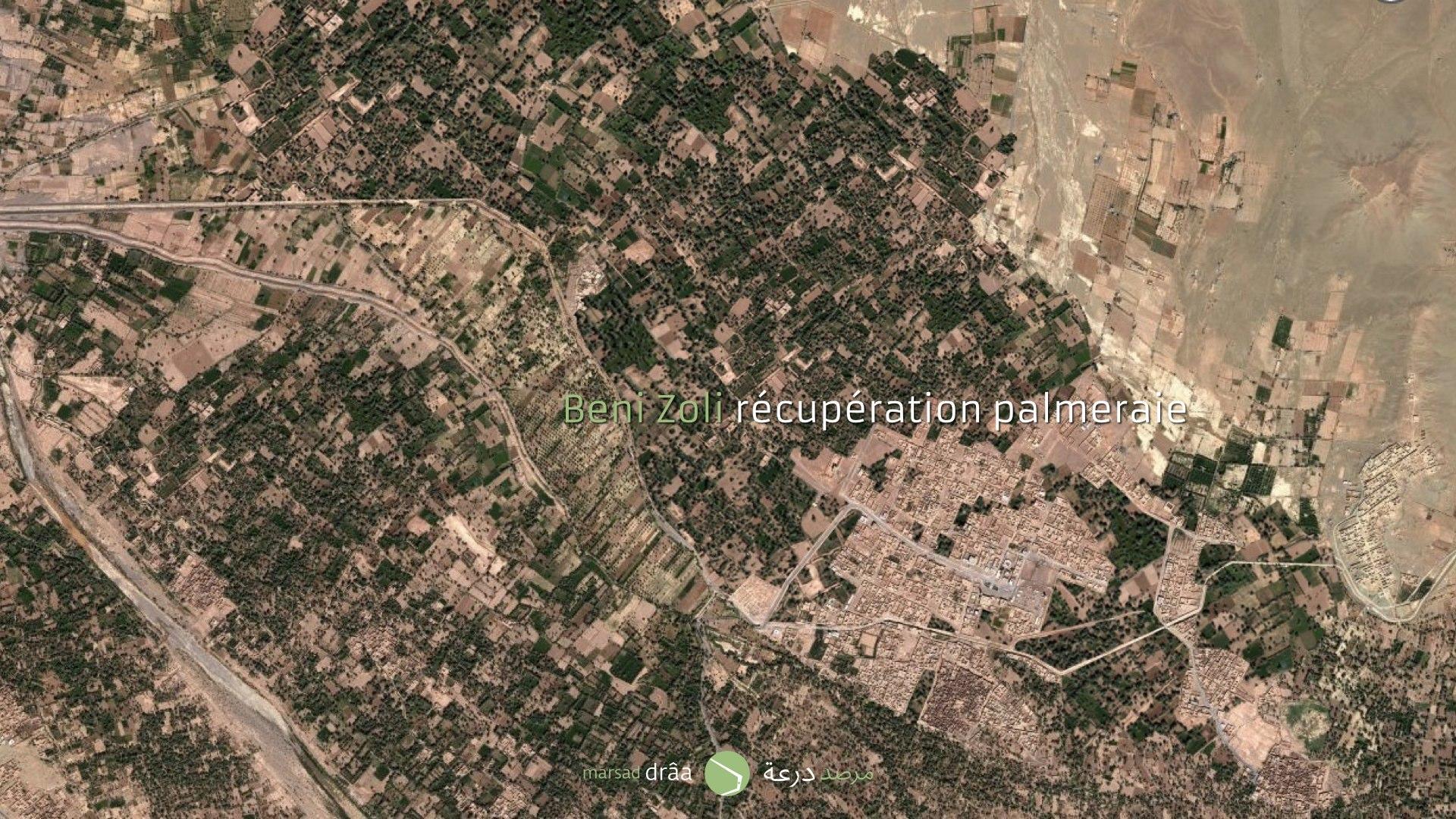 Imaginons que la palmeraie est toujours présente. Comment pourrait-on développer la ville à l'intérieur de l'oasis?