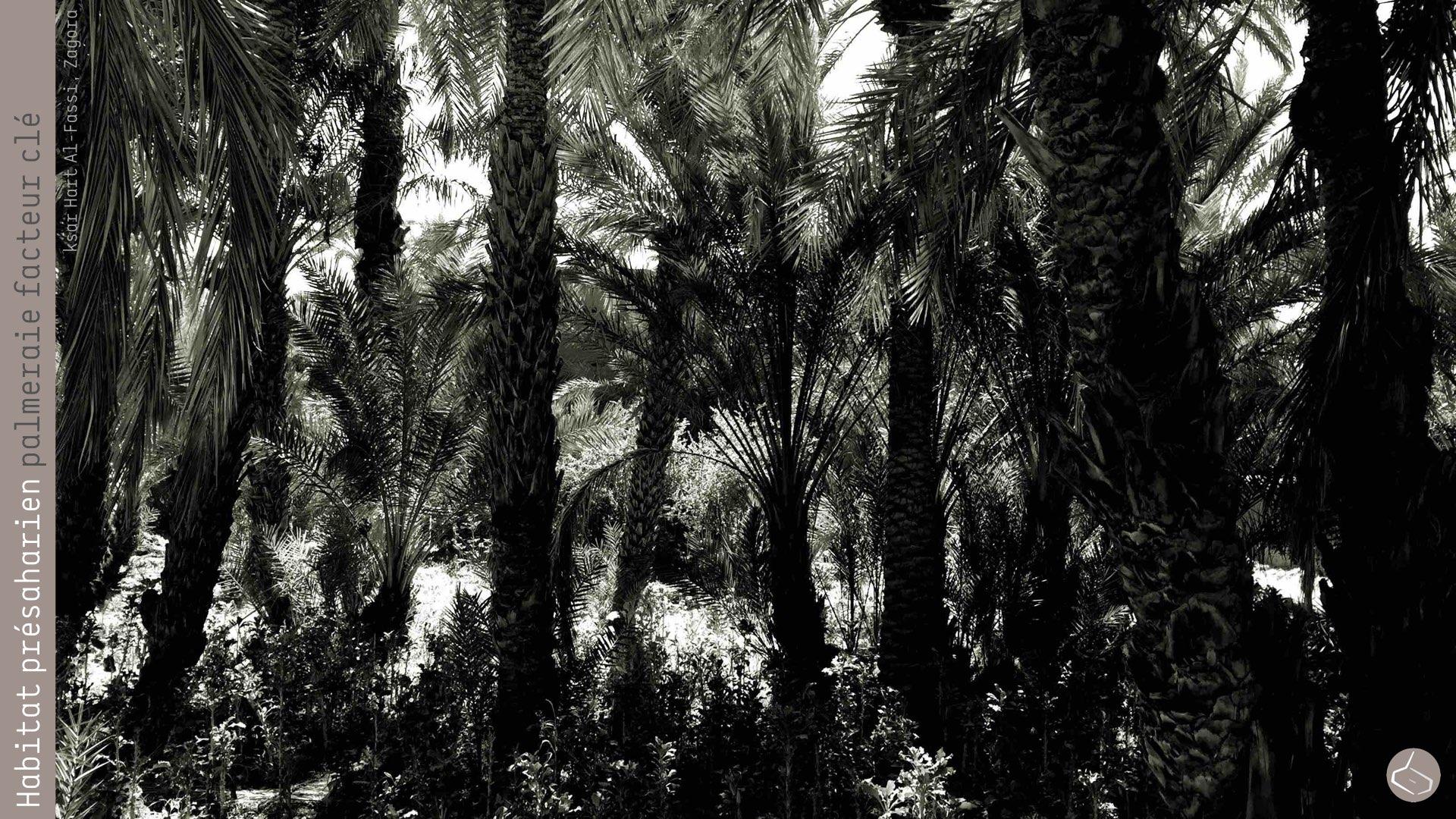 """93. Il faut rappeler que la différence de température entre vivre dans la palmeraie ou en dehors, peut arriver à 6ºC. L'idéal serait de construire les nouveaux quartiers, non pas dans la palmeraie, mais dans les terrains occupés auparavant pour les palmiers, en profitant de l'aménagement """"urbain"""" pour reboiser la palmeraie…       93. We would like to remember that the temperature difference between living inside or outside the palm grove can reach 6 ºC. The ideal would be to build new districts, not in the palm grove, but in the land occupied in the past for the palm trees, taking advantage of the """"urban planning"""" (or we must say oasian planning), we could reforest the oases ..."""