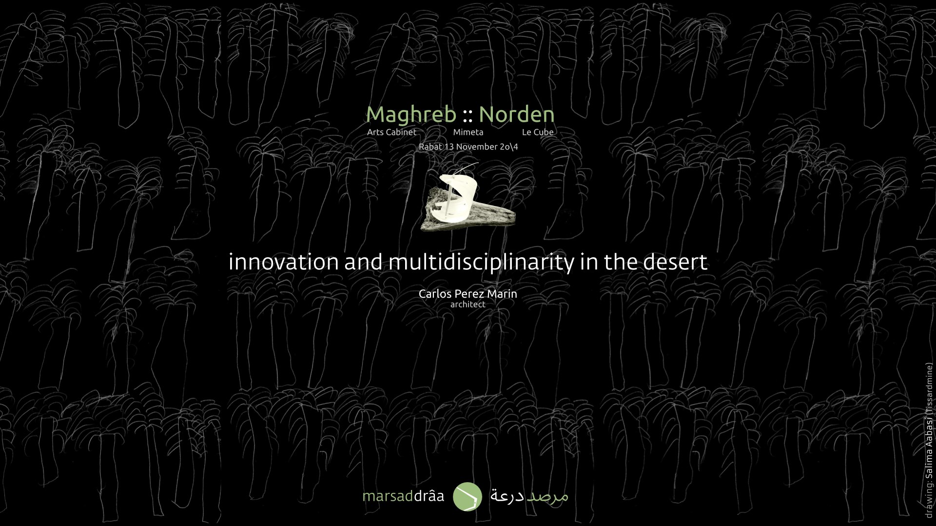 The extreme conditions of the desert offers us a wide variety of complex spaces for innovation, where multidisciplinarity it is not an option but an imperative. Geography, natural ecosystems, anthropology, history, architecture, engineering, economy... are some of the issues that must be considered and studied in order to propose any (cultural) development in these regions.