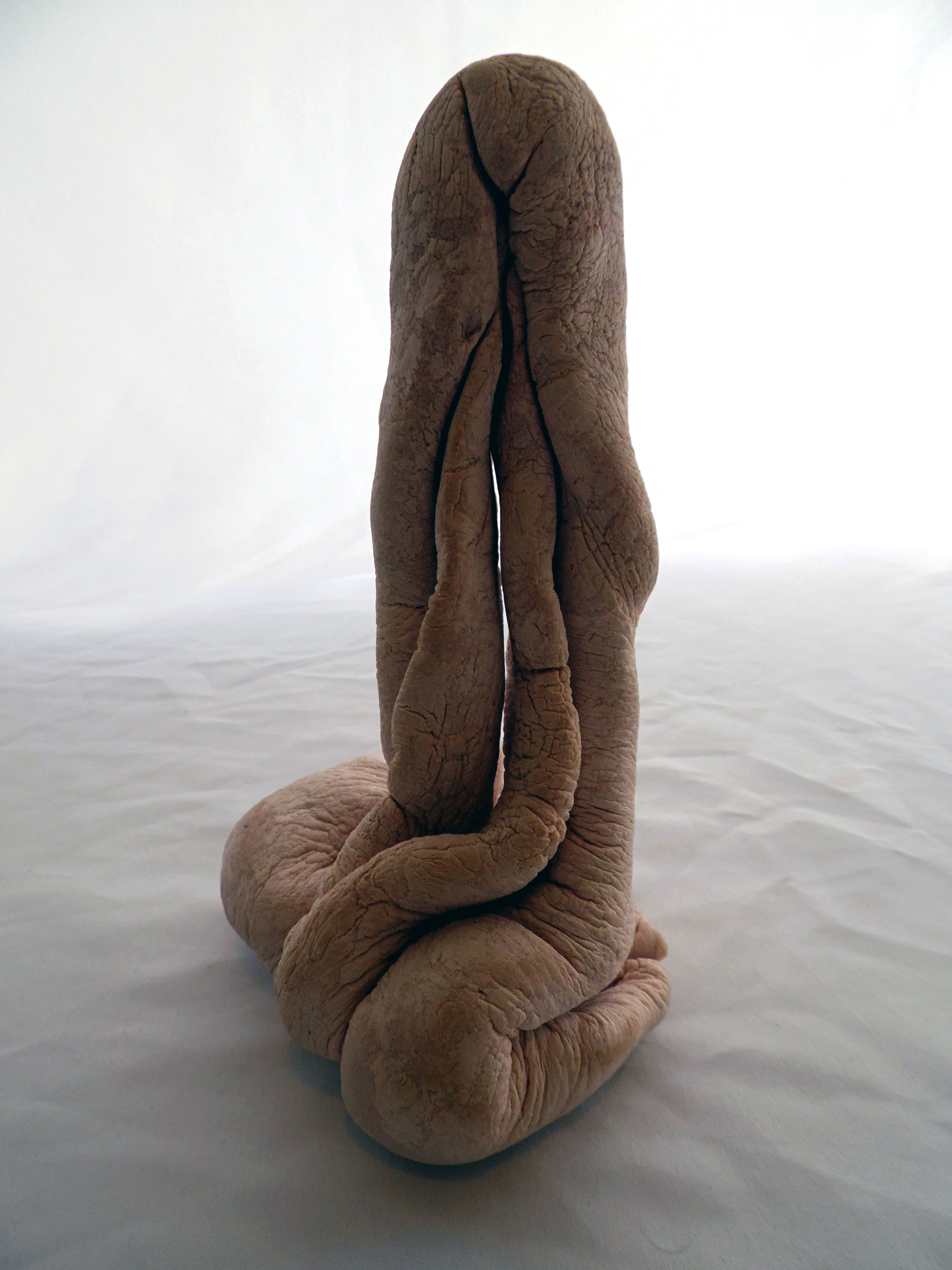 Franklin Cassaro, Nodus Chorda Vulviforme Rósea