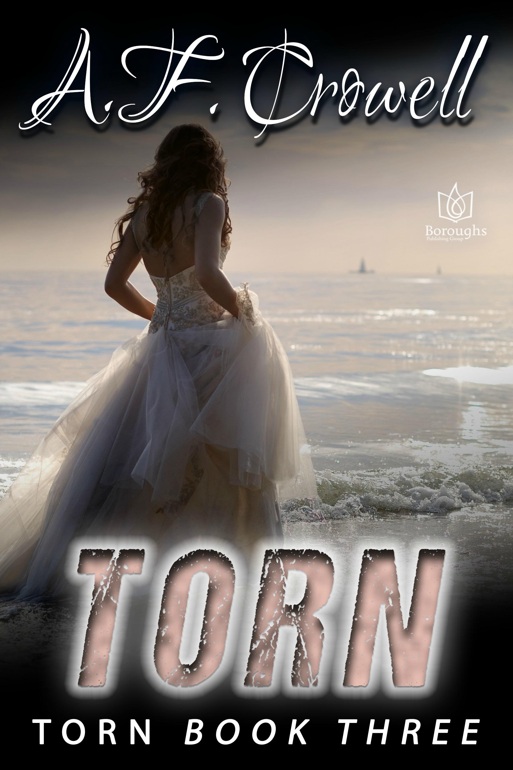Torn Ebook Cover.jpg
