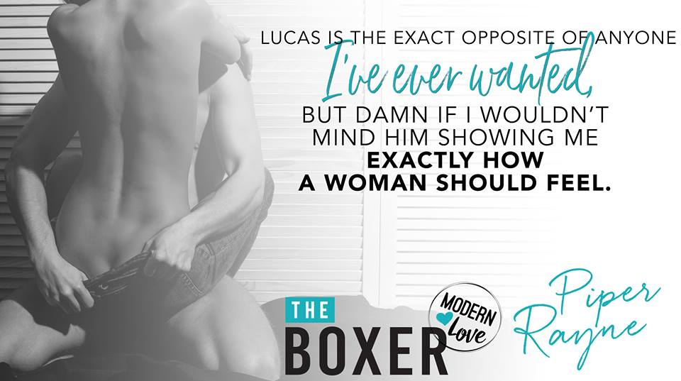 The Boxer Teaser 2.jpg