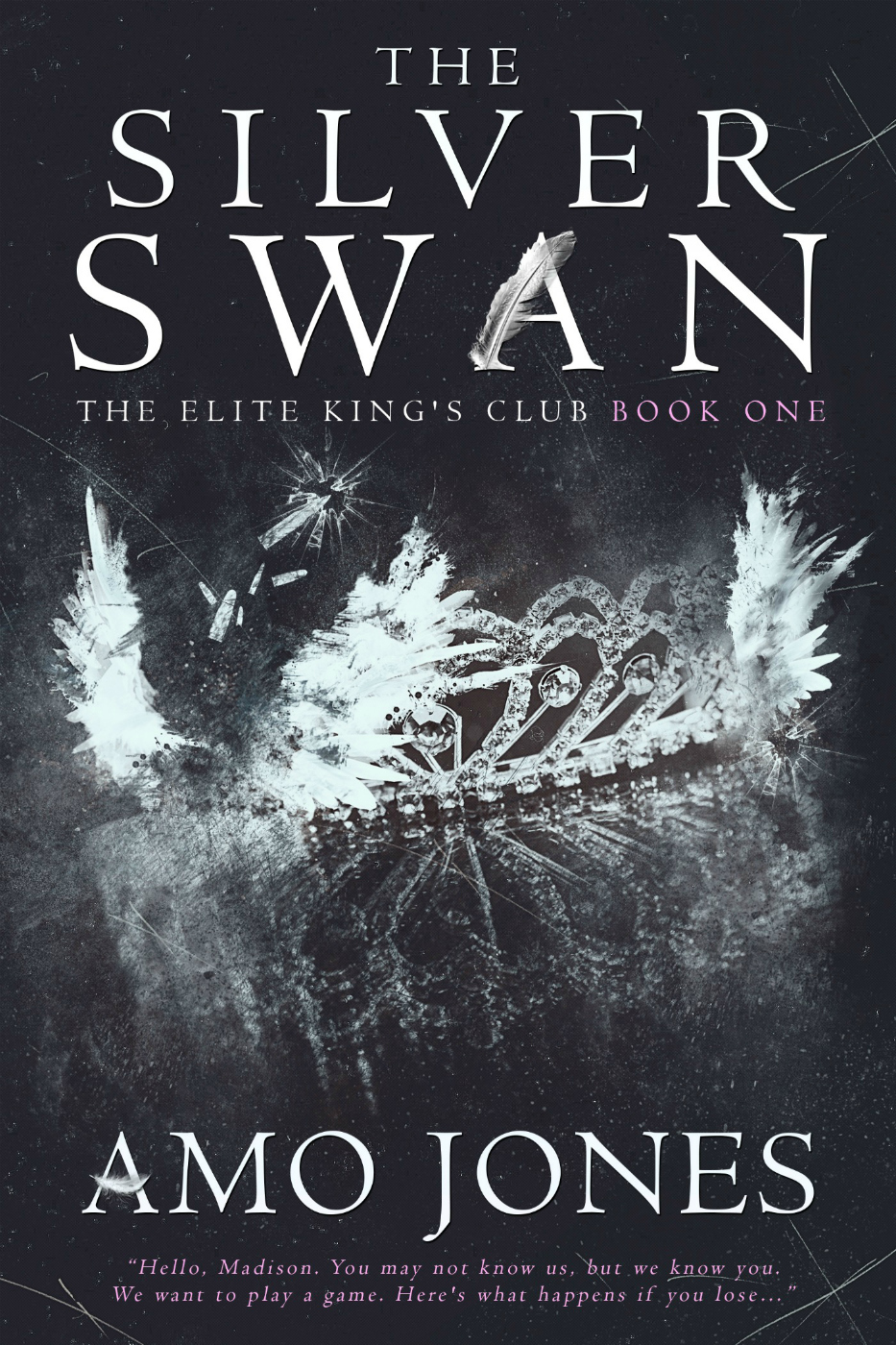 The Silver Swan Ebook Cover.jpg