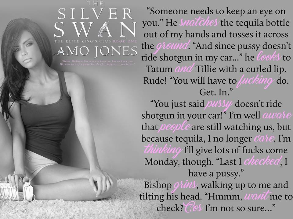 The Silver Swan Teaser 3.jpg