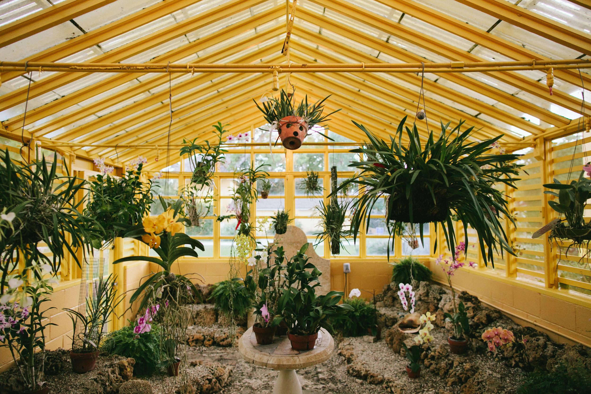 Tropical Garden Wedding at the Bonnet House Fort Lauderdale (23).jpg