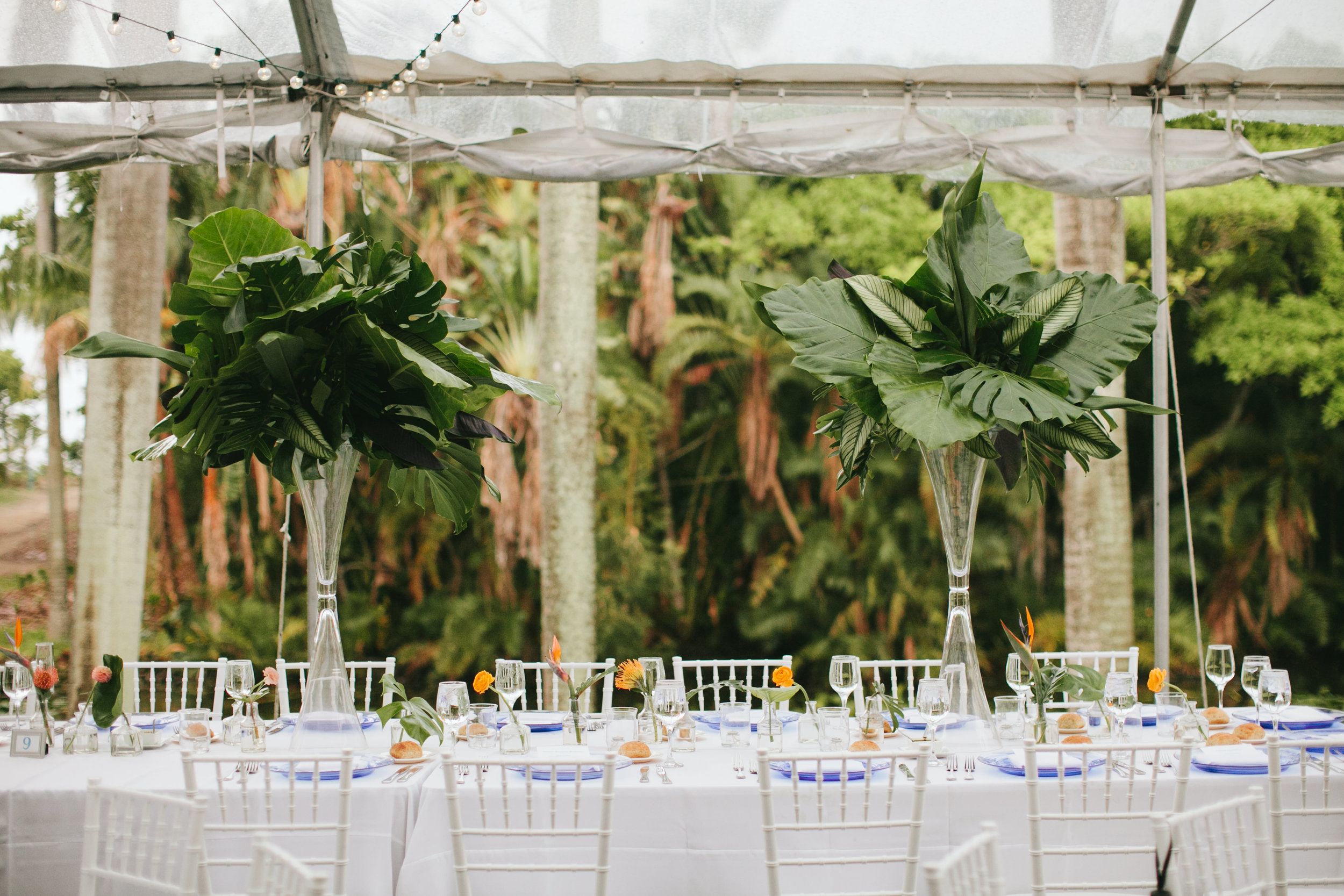 Tropical Garden Wedding at the Bonnet House Fort Lauderdale (64).jpg