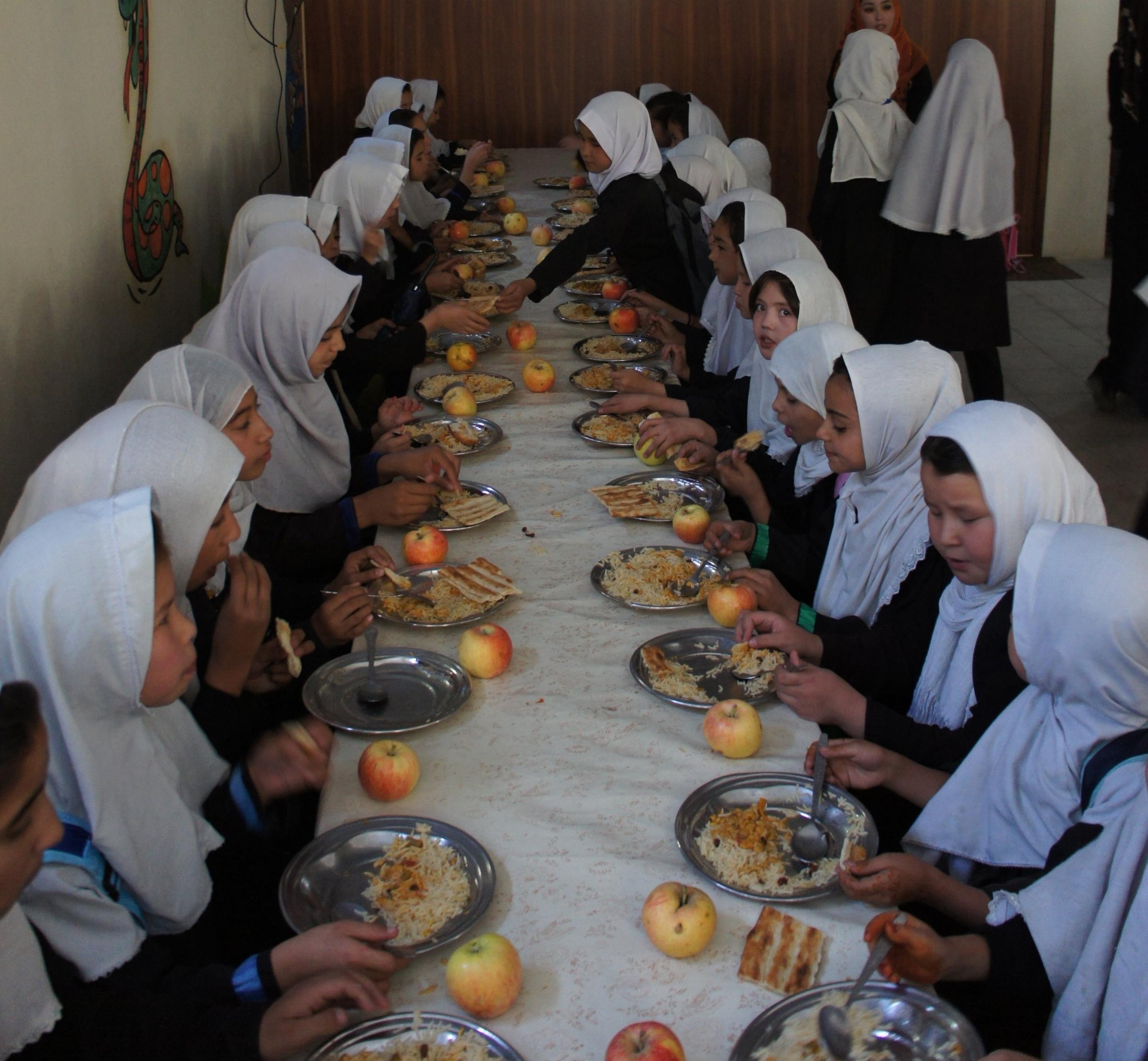 Abul-Fazel - #3007 | MaleAge When Starting School: 8