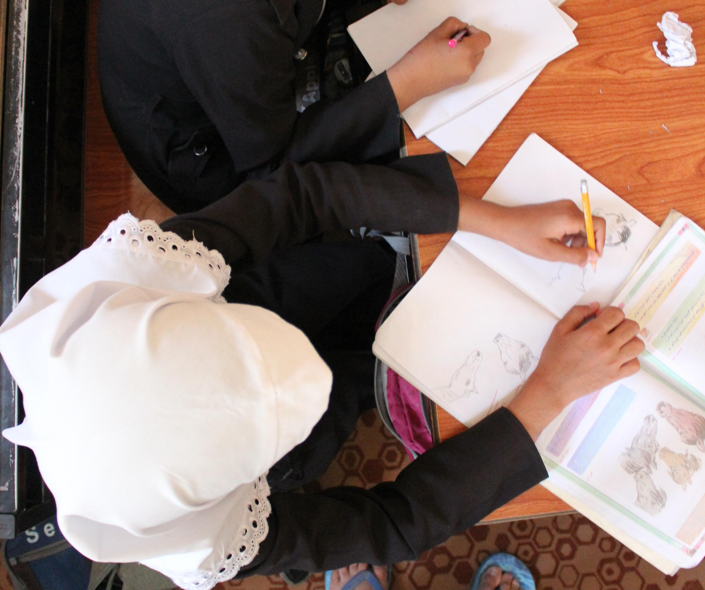 Ali-Sajad - #3008 | MaleAge When Starting School: 10
