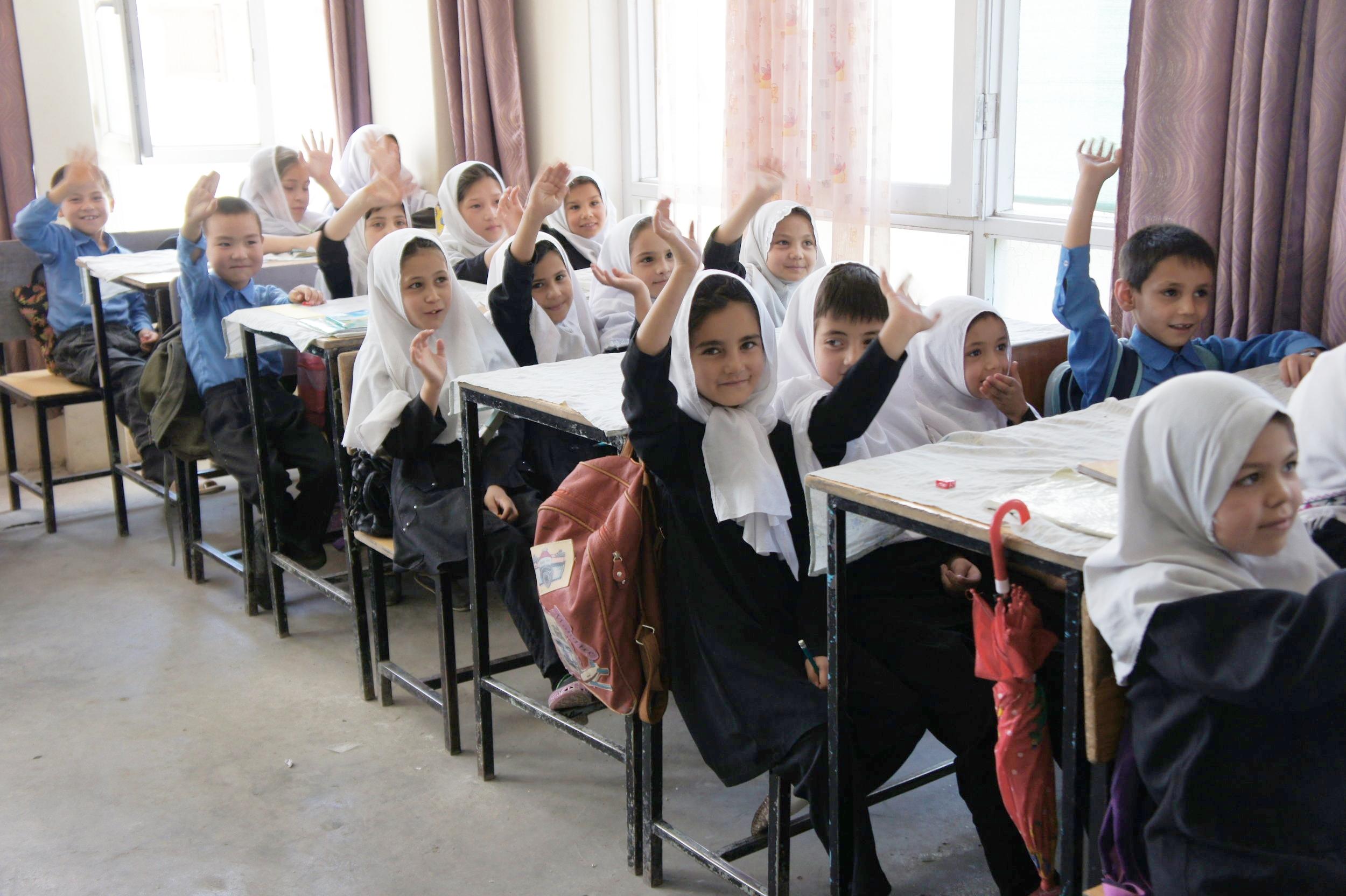 Ali-Shah - #3012 | MaleAge When Starting School: 11