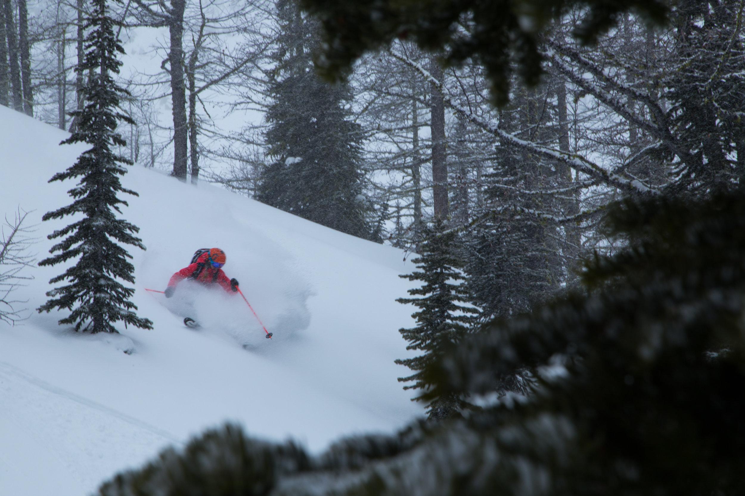 boulder-hut-skiing.jpg