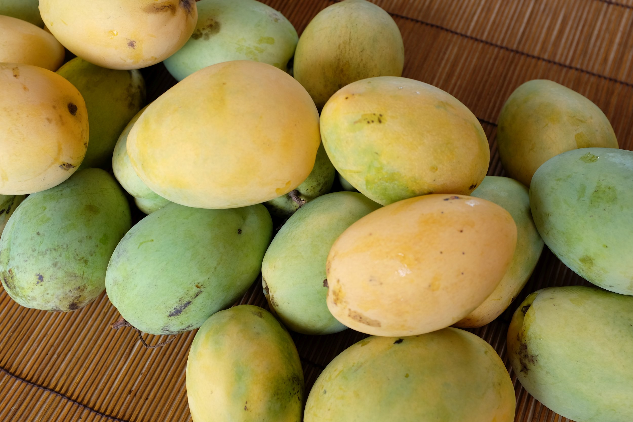 We have a great selection of 'Duncan' Mangos!