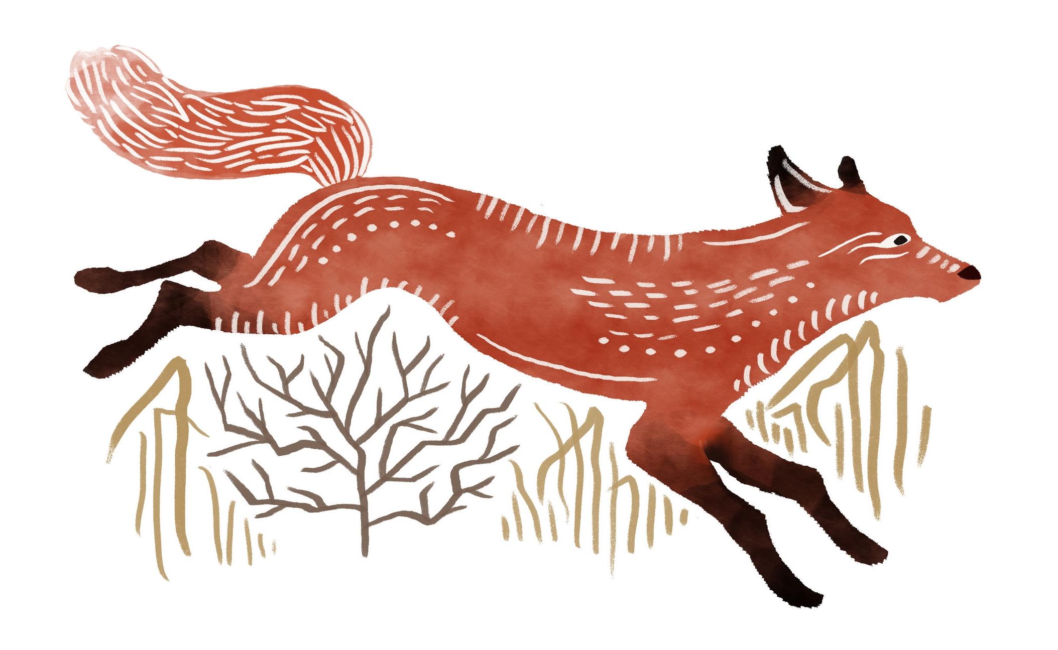 FOX-Revised_2.jpg