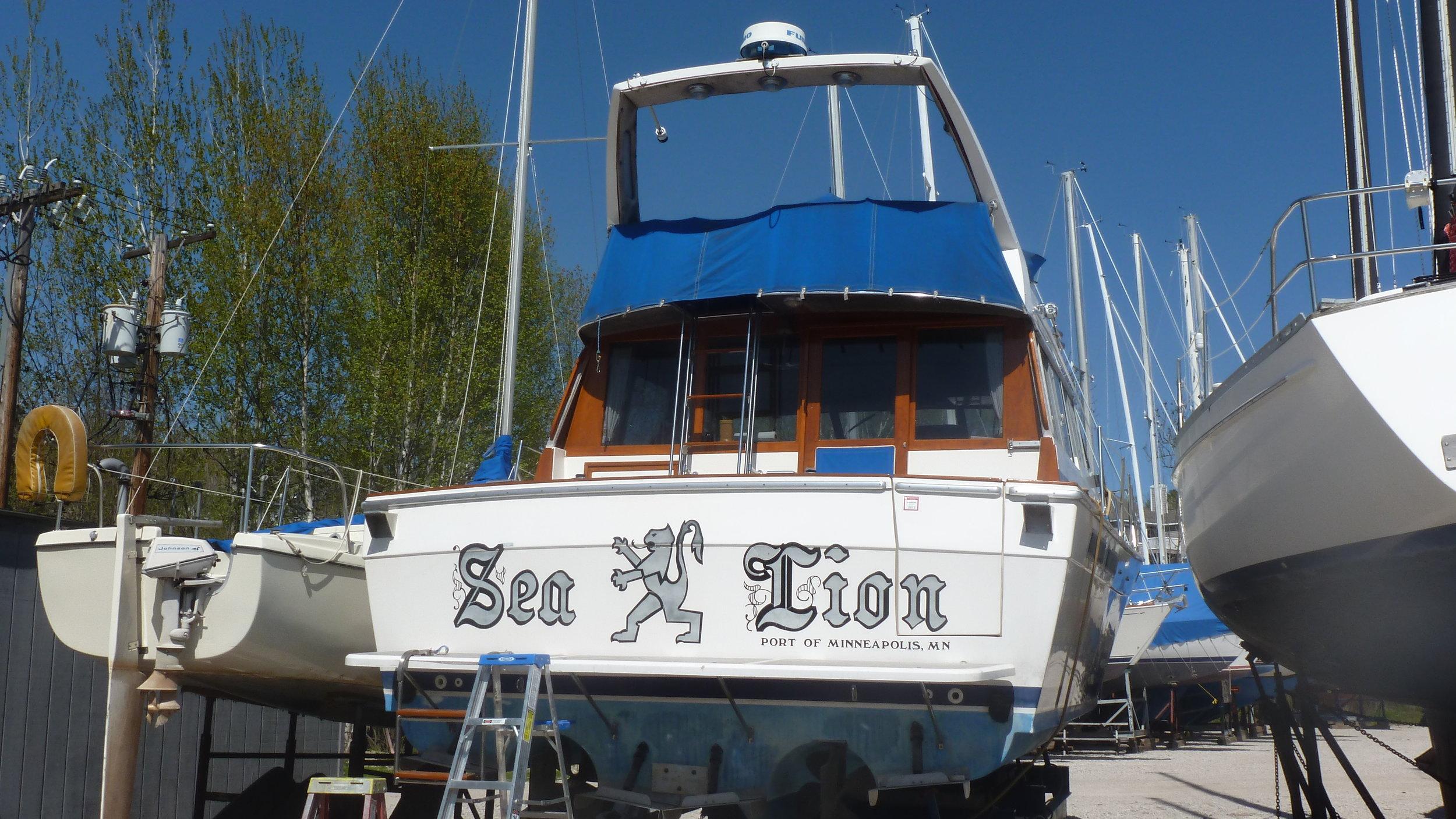 Sea Lion_2012 05 11_4948.JPG