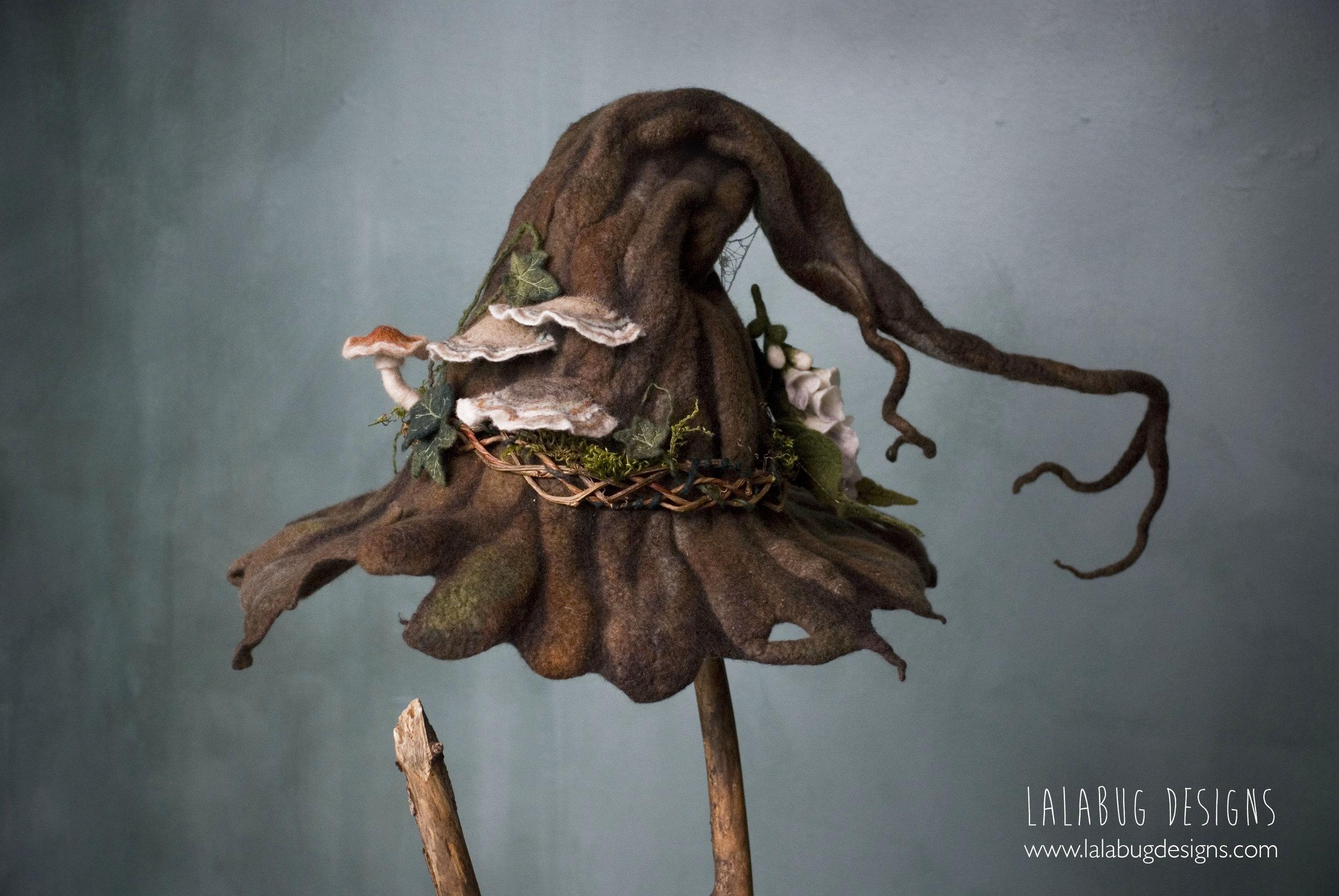 witchhatbark-6.jpg