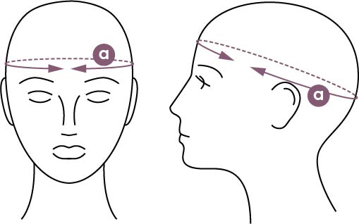 headmeasurement.jpg