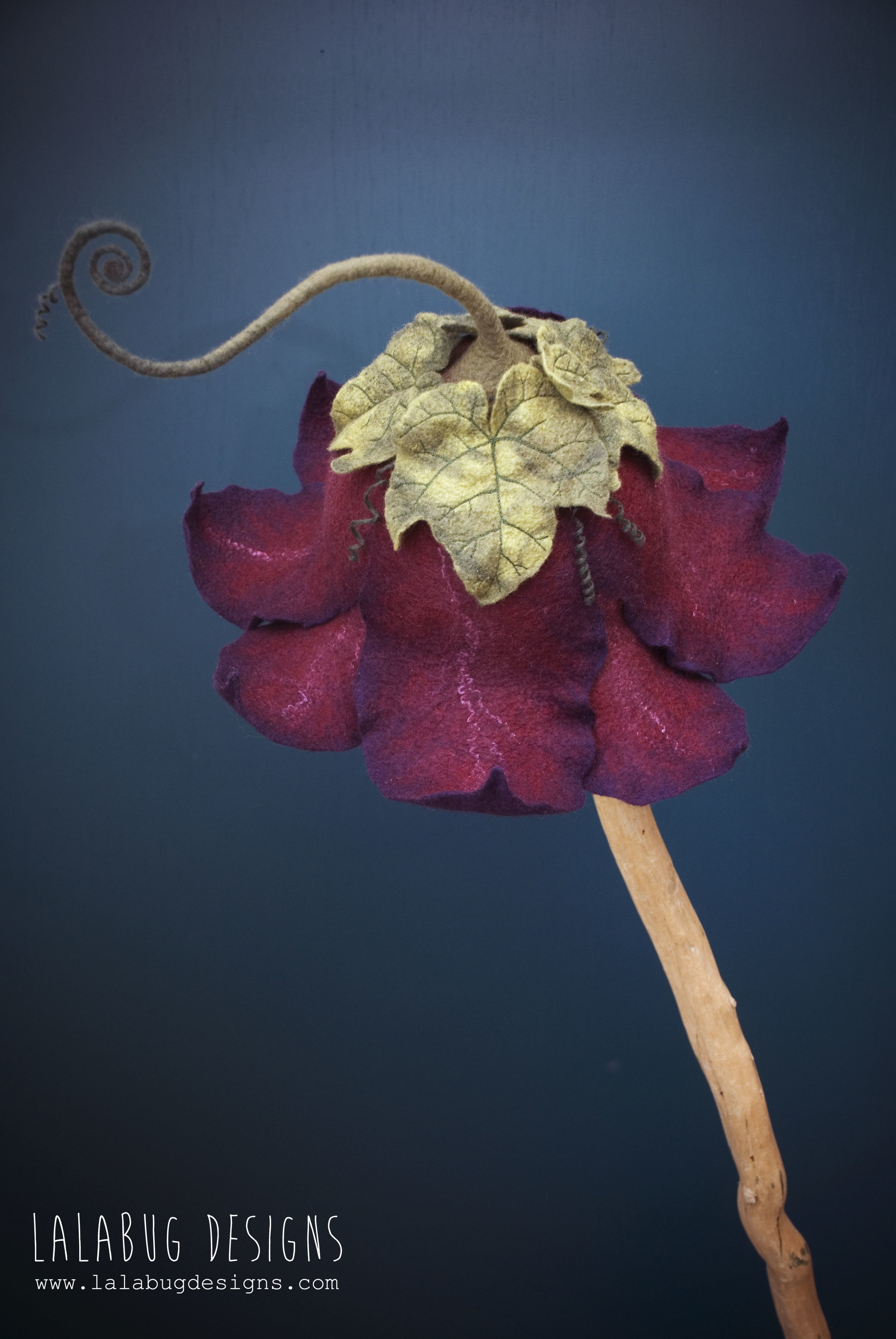 flower-grapeleaf1.jpg