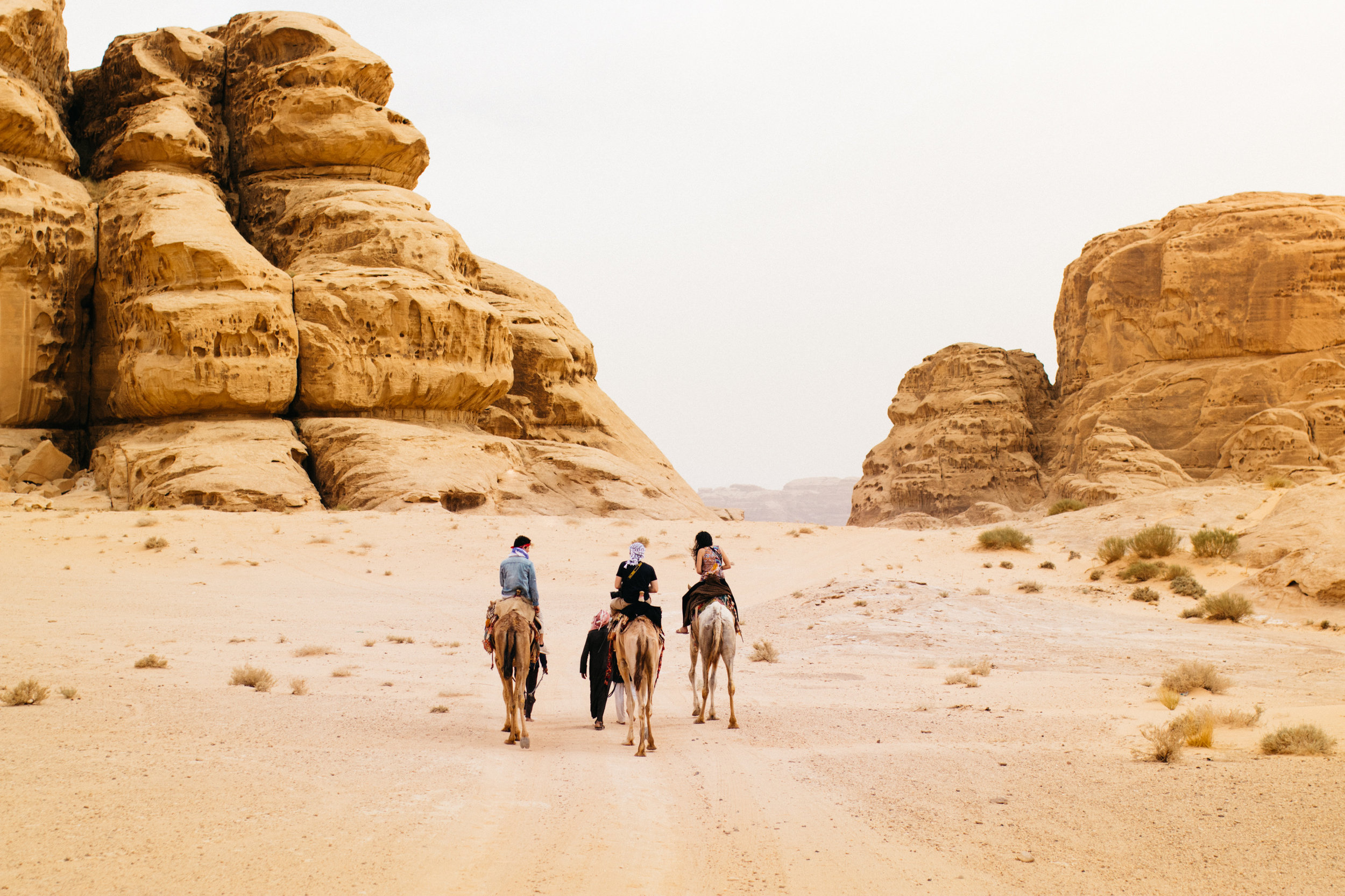 Click here to see the past movies in Jordan!