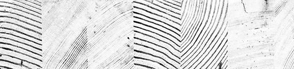 woodgrain-journal-2.jpg