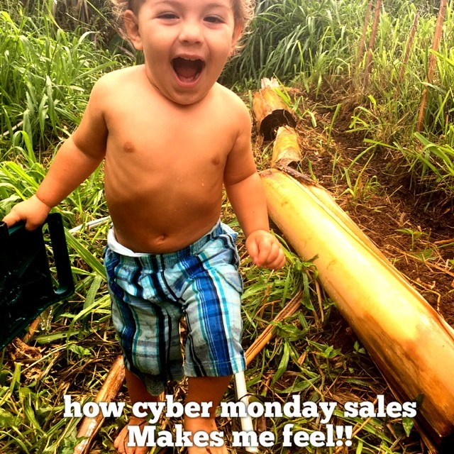 15 % off entire store today!! PROMO CODE: blessed. #skincare #skincareblogger #sale #products #maui #organic #natural #botanical #bodybutter #hydrosol #island #naturalbeauty #mom #babysafe
