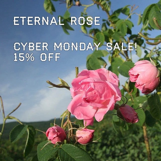 PROMO CODE: imaqueen~ Decadence should be a part of your every day. Here at Maui Blessed Organics we believe that. So treat your self or your clients to a deeply nourishing facial treatment with our Eternal Rose Exotic Oil. Being featured this Monday for 15% @ mauiblessedorganics.com. #love #rose #skincare #skincareblogger #organic #maui #mauiblessedorganics #hawaii #entrepreneur #mom #babysafe #naturalbeauty #health #happypeople