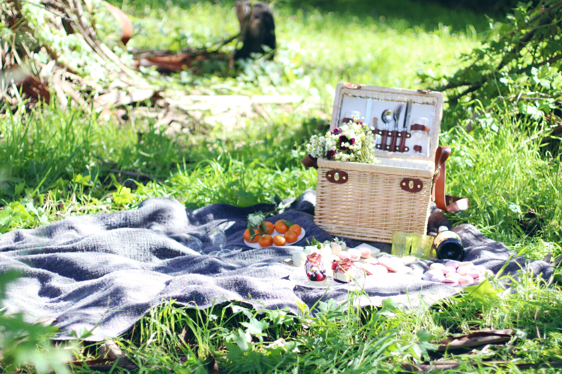 Picnic in the Park livekerfully.com