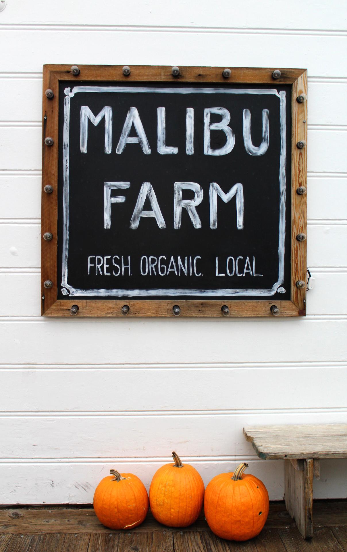 Morning in Malibu